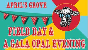 OPAL field day and gala
